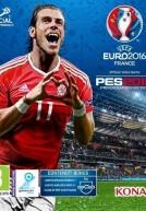 [PC]UEFA Euro 2016 France-TiNYiSO