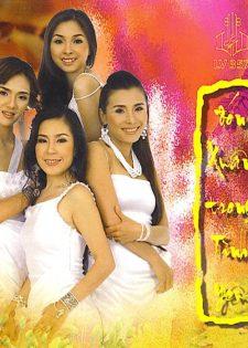 LVCD357: Various Artists – Đón Xuân Trong Tình Yêu