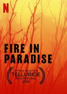 Hỏa Hoạn Tại Paradise