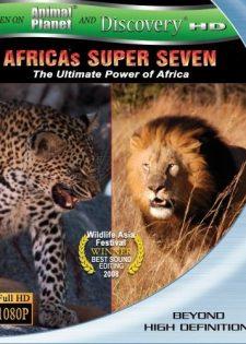 7 Loài Thống Lĩnh Châu Phi
