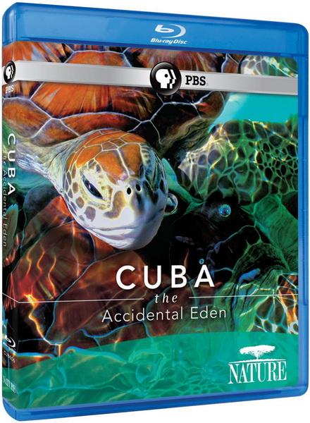 Cuba: Địa Đàng Bất Ngờ
