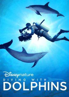 Lặn Cùng Cá Heo