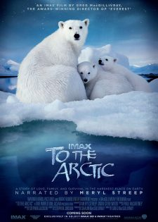 Đường Đến Bắc Cực