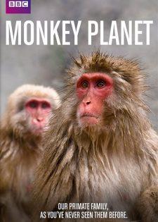 BBC Thế Giới Loài Linh Trưởng