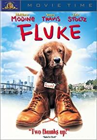 Chú Chó Fluke
