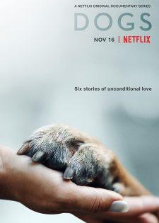 Những Chú Chó: Phần 2