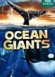 Những Gã Khổng Lồ Trong Đại Dương