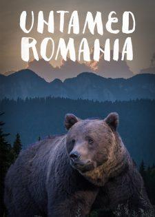 Thiên Nhiên Hoang Dã Romania