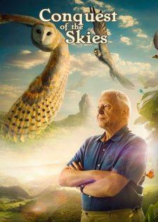 David Attenborough's Hành Trình Chinh Phục Bầu Trời Của Động Vật