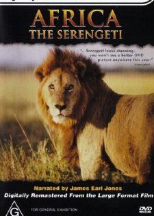 Thiên Nhiên Hoang Dã Serengeti